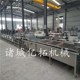 连续式速冻蔬菜加工生产线