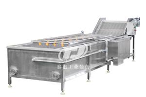 江西廠家直銷泰杰TJ-6000根莖類蔬菜水果葡萄清洗機高壓氣泡清洗機