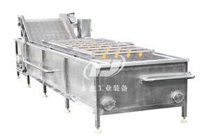 湖南廠家直銷泰杰TJ-6000油菜氣泡清洗機蔬菜氣泡清洗機