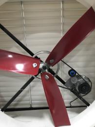 猪舍风机+玻璃钢风机+生产厂家