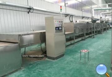 工业无机盐微波干燥设备
