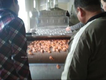 大虾烘烤杀菌设备使用微波设备的理由