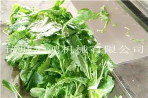 生菜青菜清洗洗菜机
