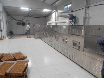 苦荞茶微波干燥熟化设备