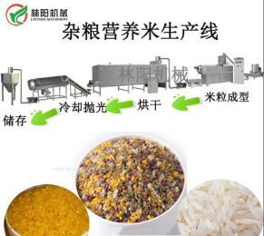 杂粮米营养米生产线