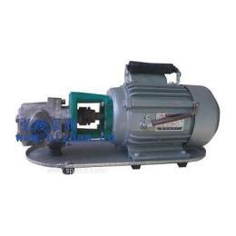 WCB微型手提式节能输油泵