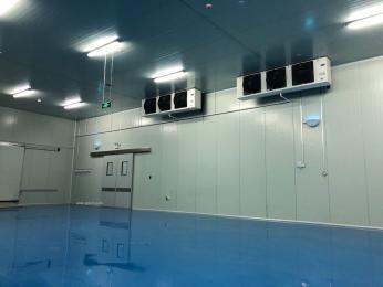 低温冷库-冷藏库-气调库-超市制冷设备安装