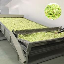 全自动大型果蔬烘干机设备