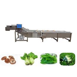 新型蔬菜清洗机 蔬菜气泡清洗设备