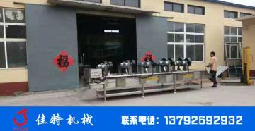 辣椒清洗风干机自动化生产