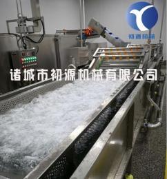 新一代叶菜类果蔬清洗机加工设备厂家图