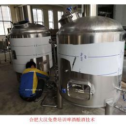 100升精酿啤酒大汉精酿啤酒设备