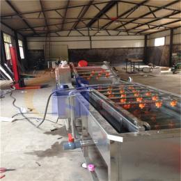 HK-规则桔梗去皮机桔梗小型清洗机药材桔梗去泥沙机器