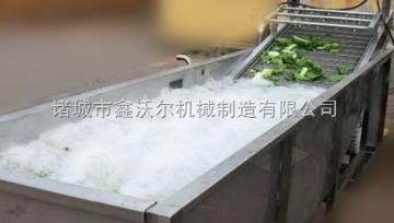QX-6000QX-6000型气泡式雪菜清洗机 叶类清洗设备