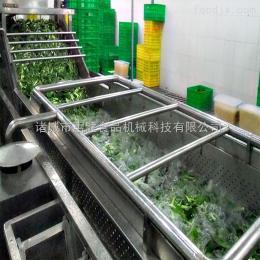 QF-5/1/B叶类蔬菜清洗机价格