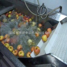 QF-5000供应304不锈钢果蔬清洗机 山野菜高压喷淋式清洗机