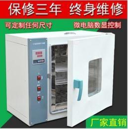 电热干燥箱202-2A,品牌电热恒温干燥箱的使用方法,恒温干燥箱现货供应商