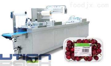 DZL-420Y新鮮水果全自動熱成型氣調包裝機