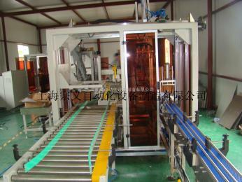 ZYZX-02PH膨化食品装箱机