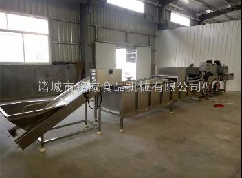 YZJ-8000木耳漂燙機 預煮冷卻生產線
