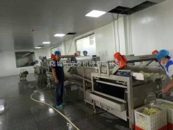 65000mm厂家直销辣椒清洗线、蔬菜清洗机设备