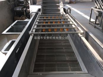 4000mm蔬菜清洗机 诸城安泰机械