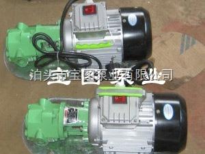 WCB-75WCB家用手提式齿轮泵日常保养好可以咨询泊头宝图泵业