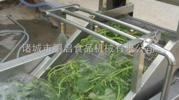蔬菜清洗机诸城果蔬气泡清洗机设备