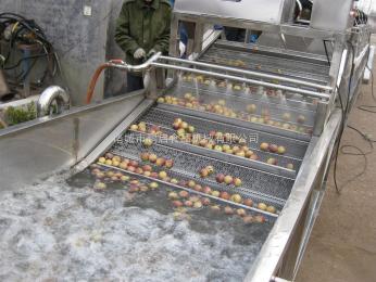 蔬菜清洗机果蔬清洗机设备