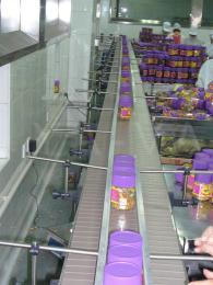 直线链板输送机诚心出售 直线链板输送机