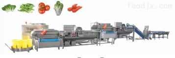DSC-1000 涡流洗菜线