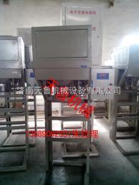 zx-c青岛半自动颗粒包装机&潍坊大米包装机-济南天鲁
