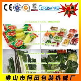 KT-600X广东新鲜蔬菜包装机械 广东蔬果包装机 自动入袋封口机