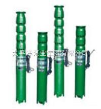 200QJ63-48/4QJ型潜水深井泵