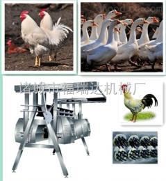 TQJ70宰鸡、宰鸭设备 立式家禽脱毛机