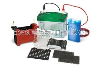 170-3930美國bio-rad伯樂小型 Trans-Blot® 轉印槽