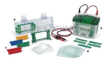 165-8000;165-8001美國伯樂Bio-Rad Mini-PROTEAN® Tetra 小型垂直電泳槽
