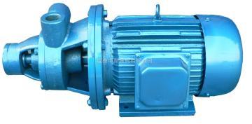 1W系鍋爐給水泵