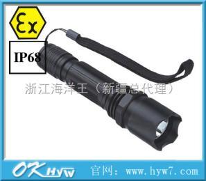 JW6100B微型防暴手电筒-JW6100B,防爆手电筒