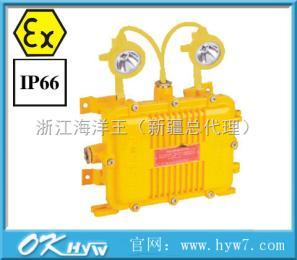 BXW6229节能长寿防爆应急工作灯--BXW6229.