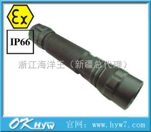 JW7303B微型防爆手电筒-JW7303B-防爆手电筒