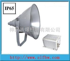NTC9200NTC9200防震型投光灯价格,海洋王防震型投光灯