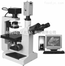 wi101555倒置相差显微镜  wi101555