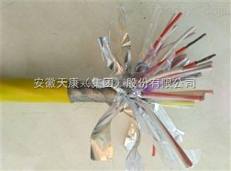 EX-HS-FFP-2*1.0鷹手營子礦區K分度號熱電偶用補償電纜JX-FPFRP-12*2*1.5
