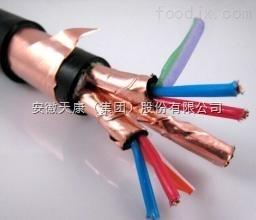 DJFFP2-1*3*1.5计算机电缆DJFFP