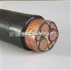 BP-YJVRP2P,BP-YJVP2P供應變頻電纜變頻器專用回路電纜ZR-BPYJVPX12R22-天康(洲鴿牌)電纜
