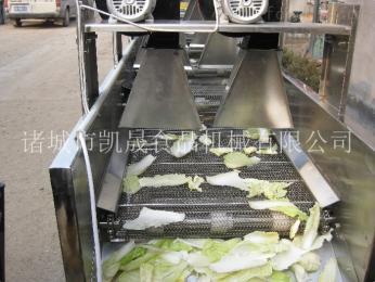 KS-80L大型食品烘干生產線