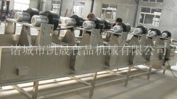 KS-300VFG食品烘干生產線