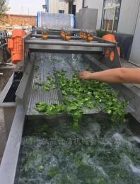 KS-YIL300不锈钢蔬菜清洗机