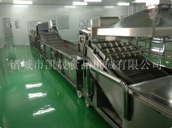 KS-600自动蔬菜清洗机